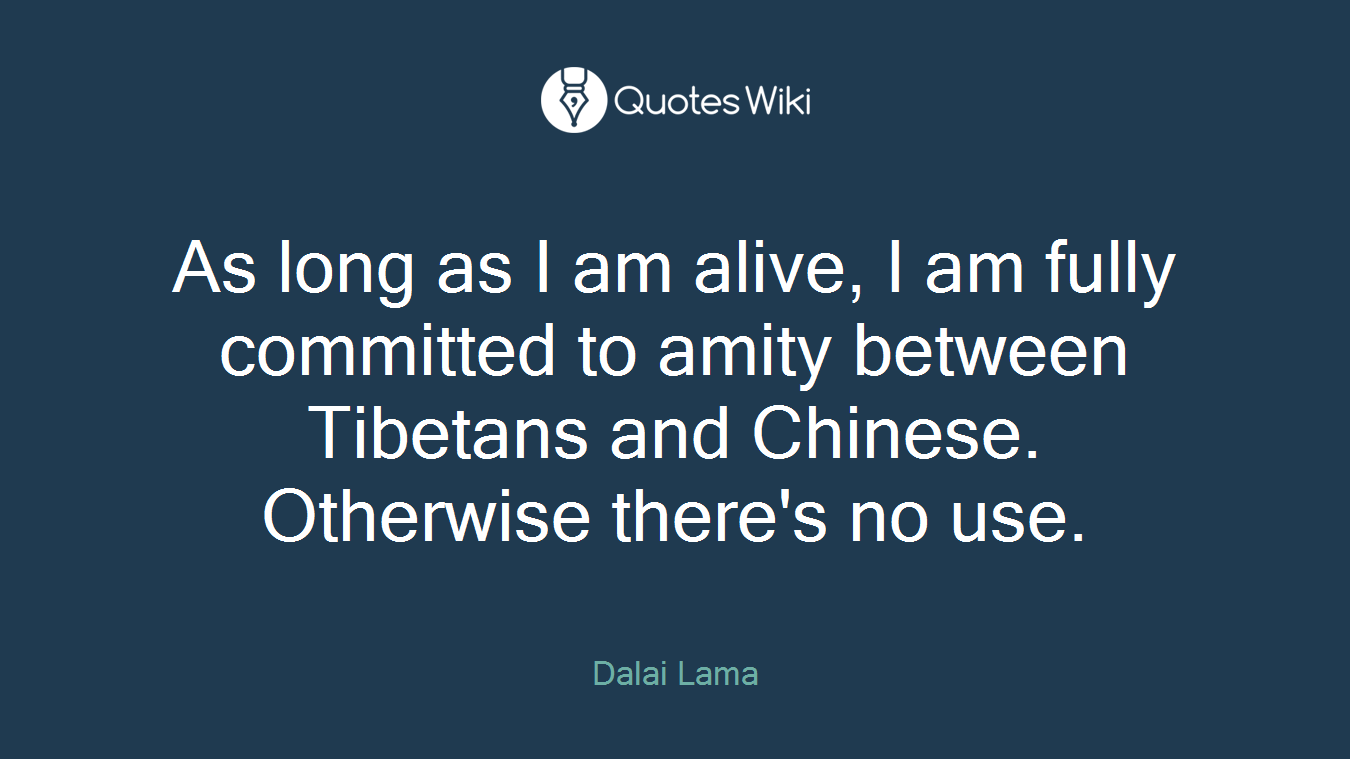 As long as I am alive, I am fully committed to amity between Tibetans and Chinese. Otherwise there's no use.