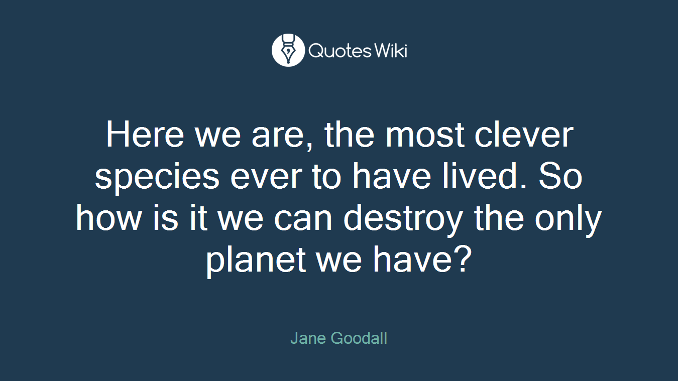 Here we are, the most clever species ever to have lived. So how is it we can destroy the only planet we have?
