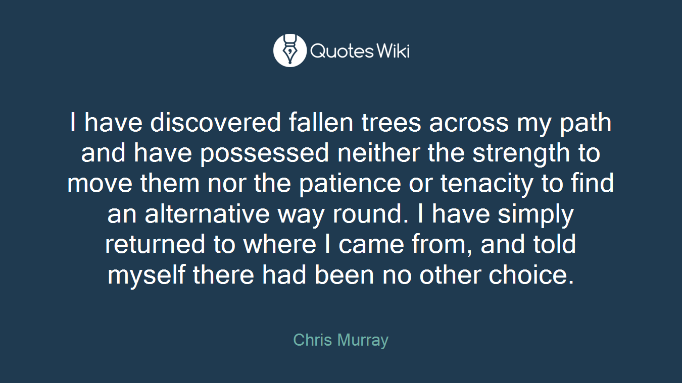 I have discovered fallen trees across my path and have possessed neither the strength to move them nor the patience or tenacity to find an alternative way round. I have simply returned to where I came from, and told myself there had been no other choice.