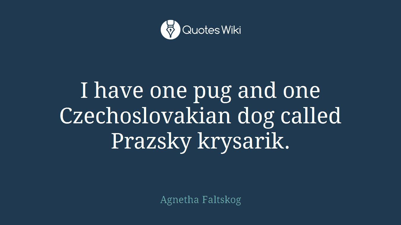 I have one pug and one Czechoslovakian dog called Prazsky krysarik.