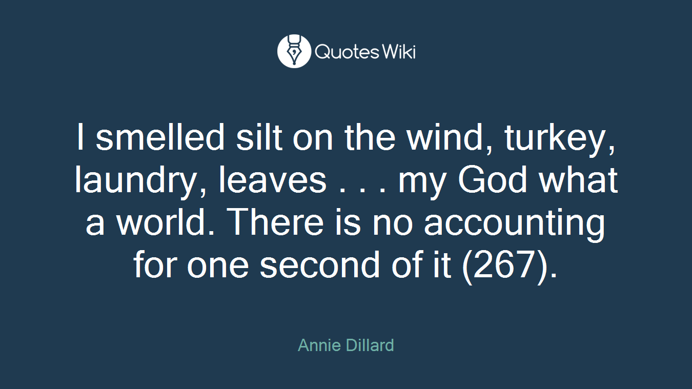 I smelled silt on the wind, turkey, laundry, leaves . . . my God what a world. There is no accounting for one second of it (267).