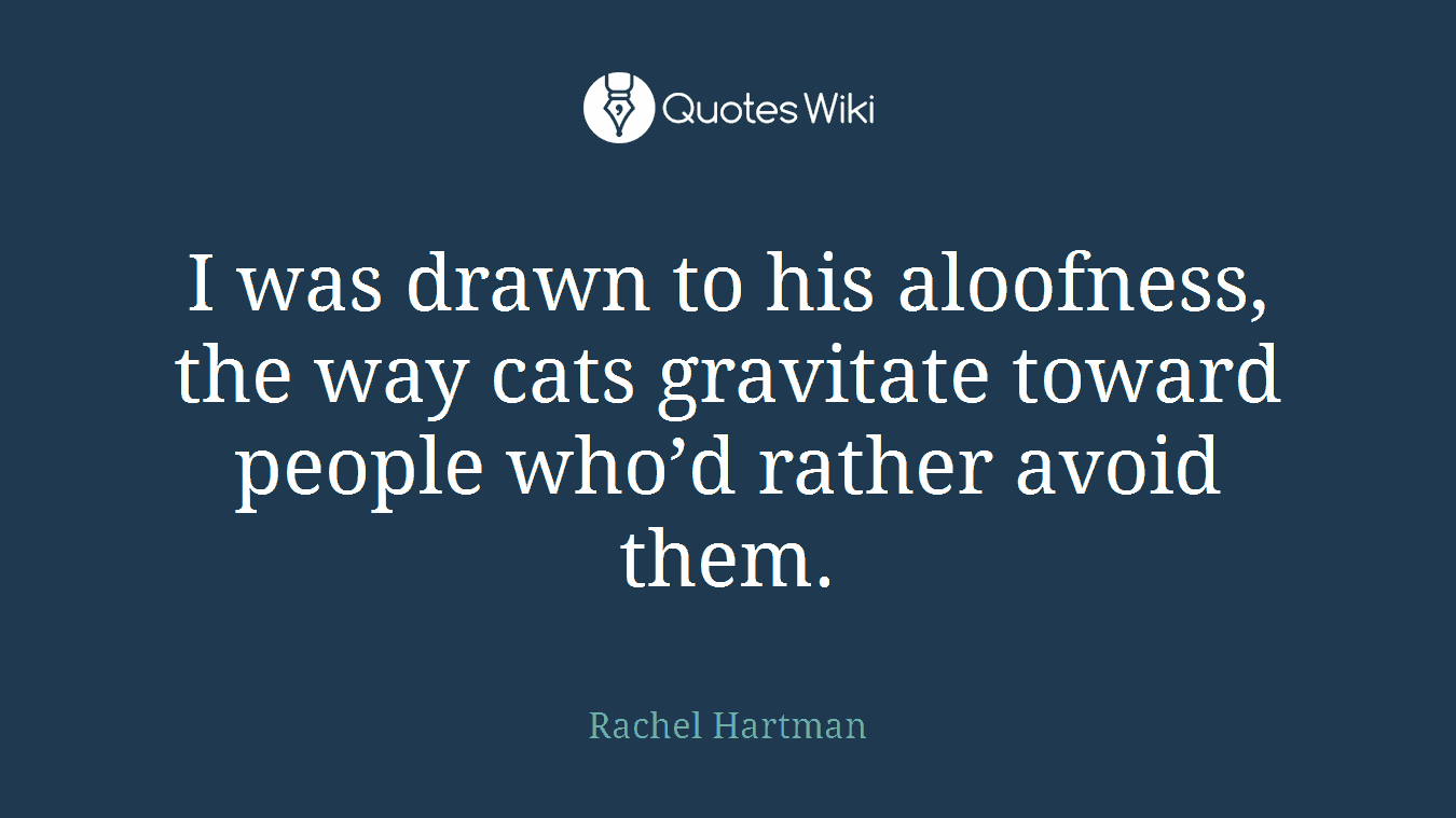 I was drawn to his aloofness, the way cats gravitate toward people who'd rather avoid them.