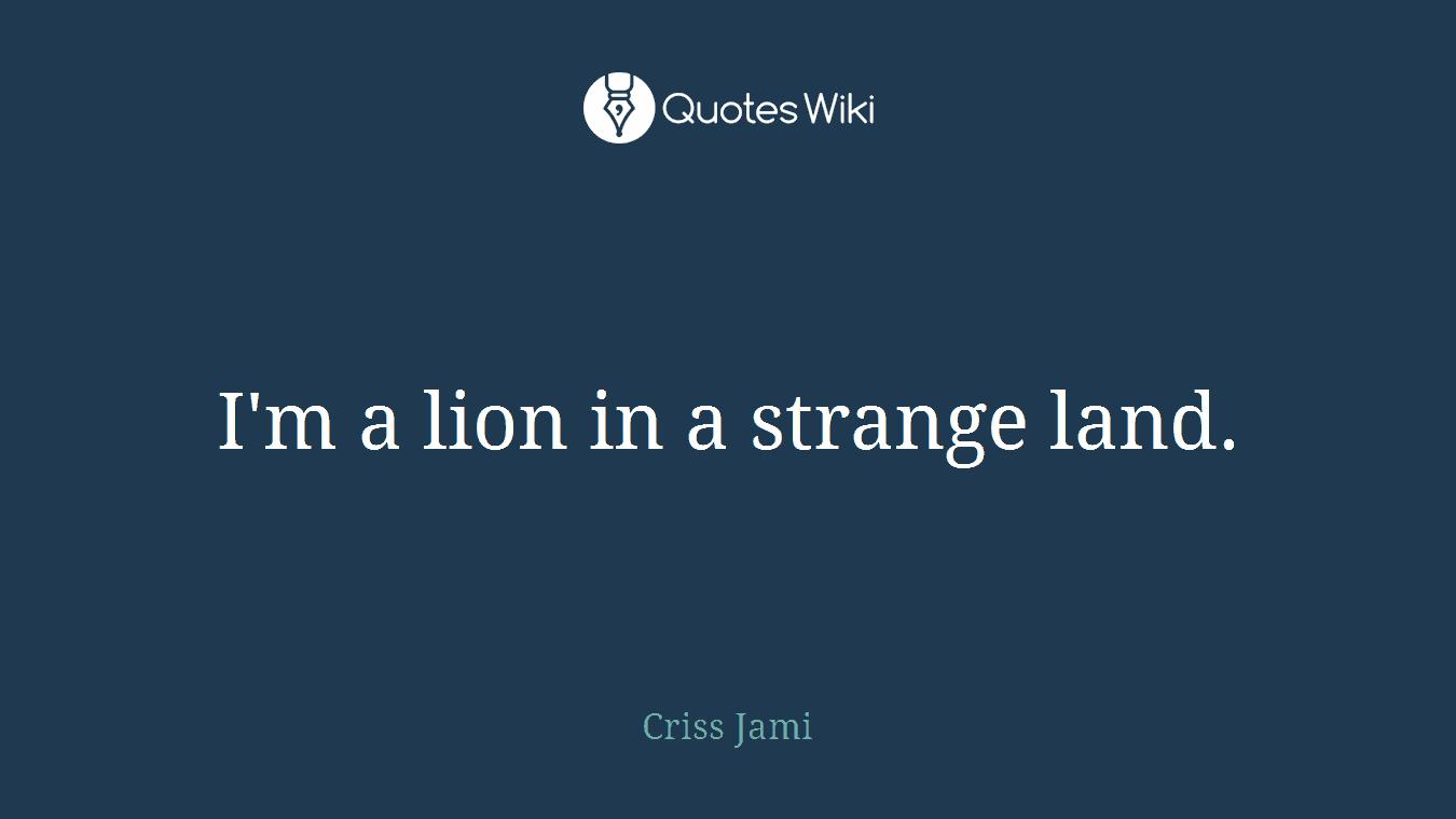 I'm a lion in a strange land.