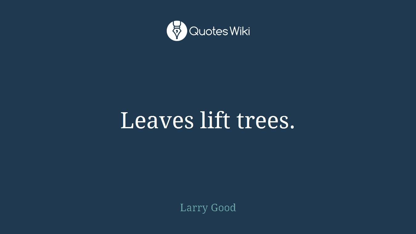 Leaves lift trees.