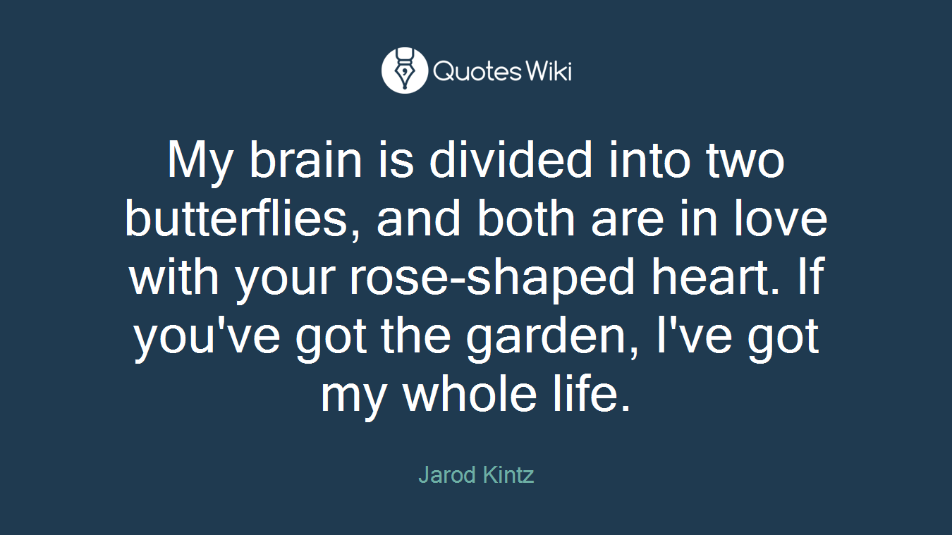 My brain is divided into two butterflies and both are in love with your rose