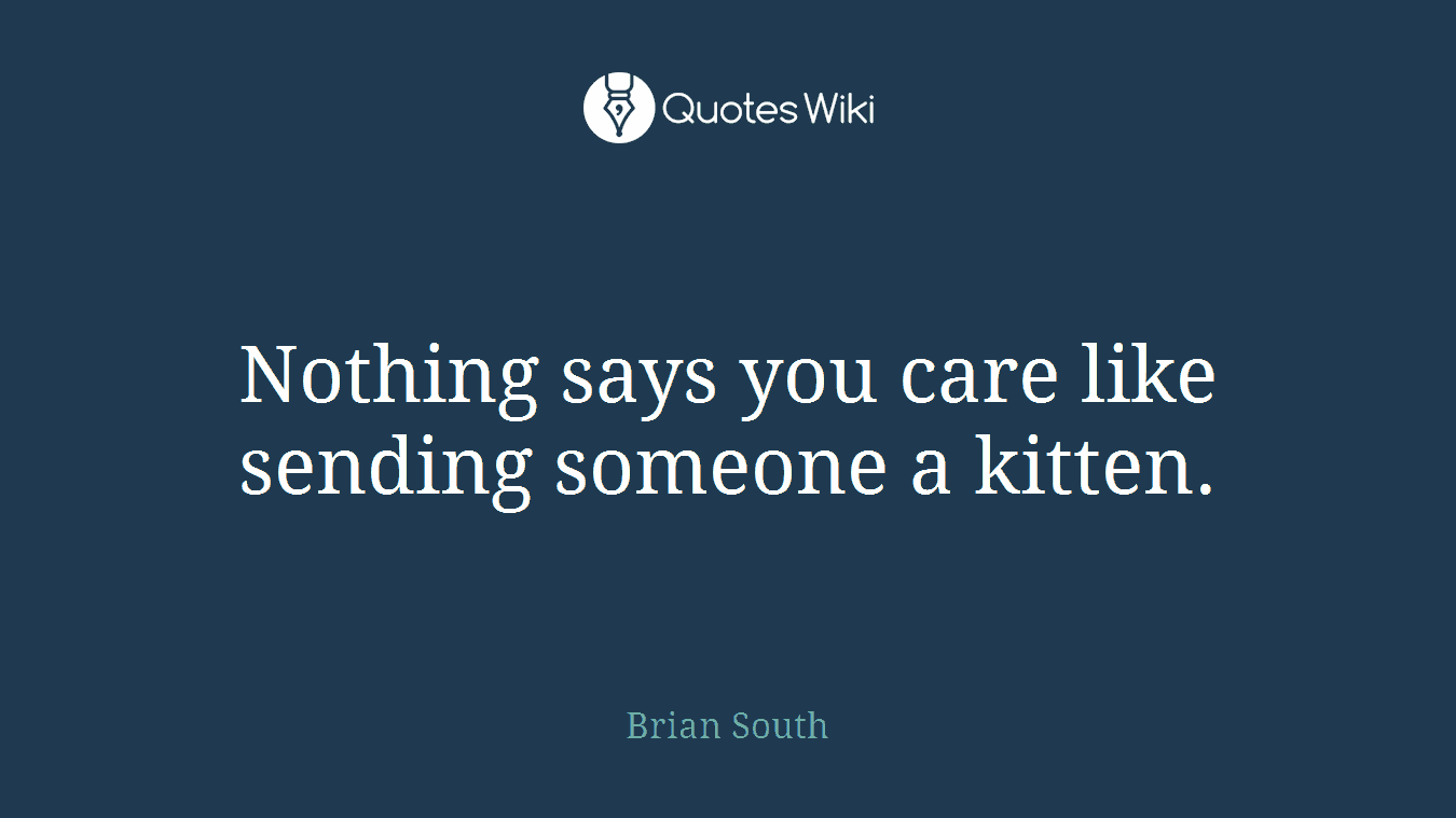 Nothing says you care like sending someone a kitten.
