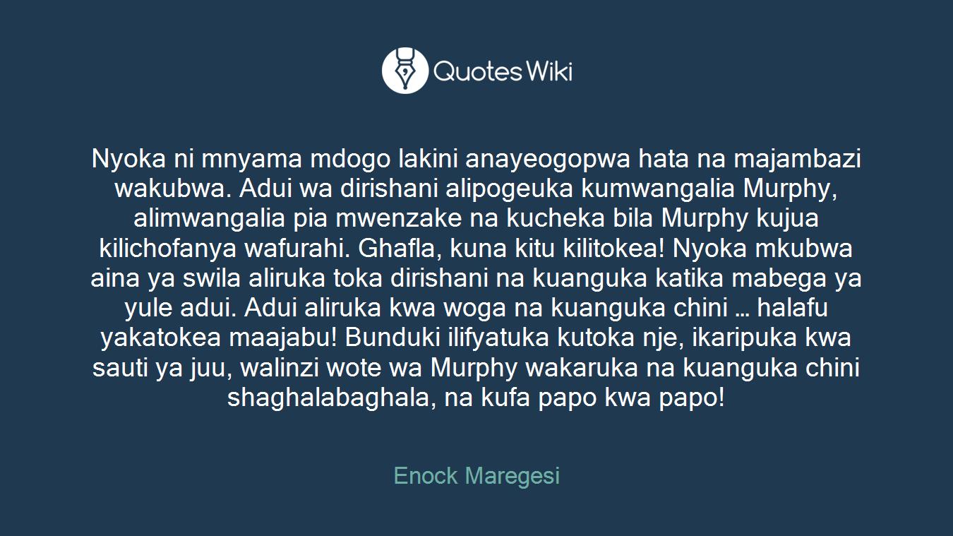 Nyoka ni mnyama mdogo lakini anayeogopwa hata na majambazi wakubwa. Adui wa dirishani alipogeuka kumwangalia Murphy, alimwangalia pia mwenzake na kucheka bila Murphy kujua kilichofanya wafurahi. Ghafla, kuna kitu kilitokea! Nyoka mkubwa aina ya swila aliruka toka dirishani na kuanguka katika mabega ya yule adui. Adui aliruka kwa woga na kuanguka chini … halafu yakatokea maajabu! Bunduki ilifyatuka kutoka nje, ikaripuka kwa sauti ya juu, walinzi wote wa Murphy wakaruka na kuanguka chini shaghalabaghala, na kufa papo kwa papo!