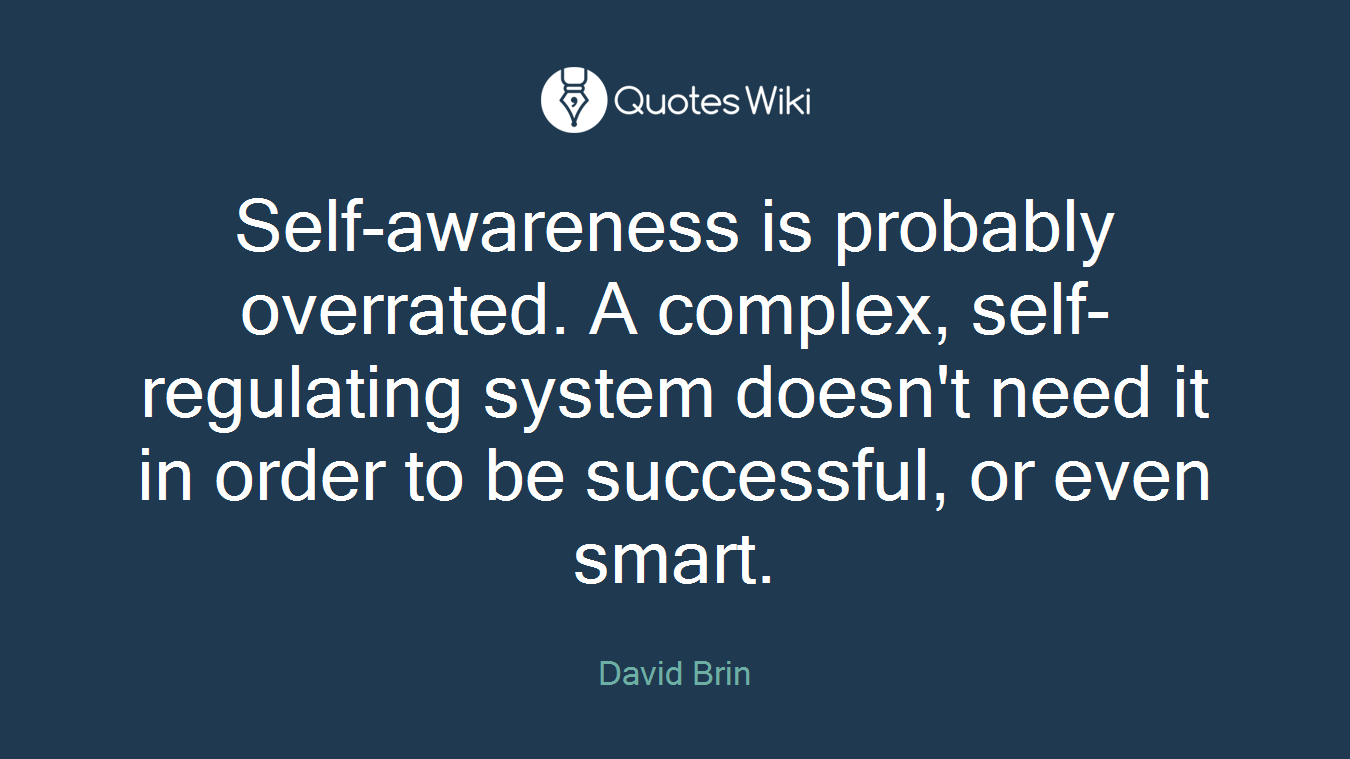 Self-awareness is probably overrated. A complex, self-regulating system doesn't need it in order to be successful, or even smart.