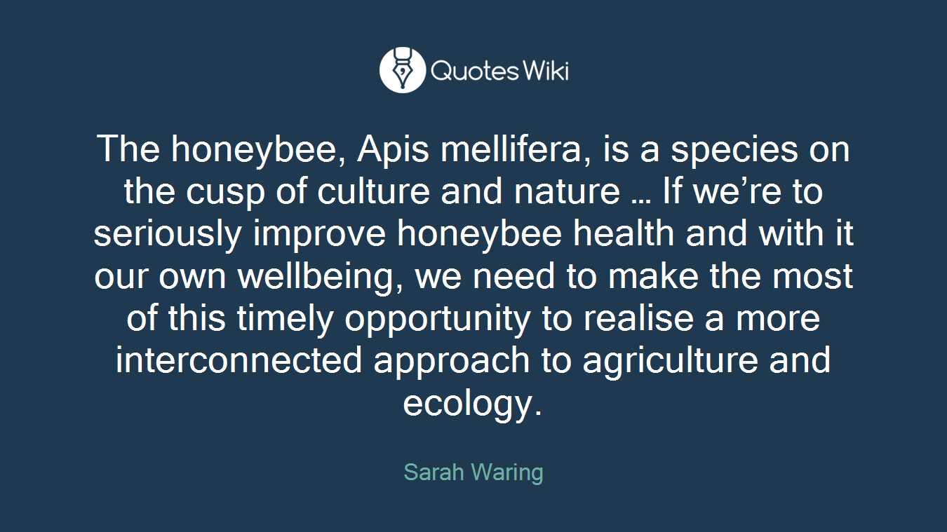 The honeybee, Apis mellifera, is a species on the cusp of culture and nature … If we're to seriously improve honeybee health and with it our own wellbeing, we need to make the most of this timely opportunity to realise a more interconnected approach to agriculture and ecology.