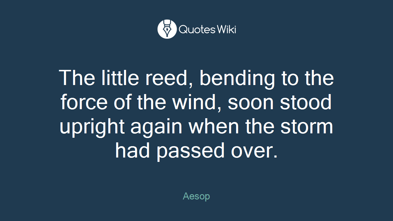 The little reed, bending to the force of the wind, soon stood upright again when the storm had passed over.
