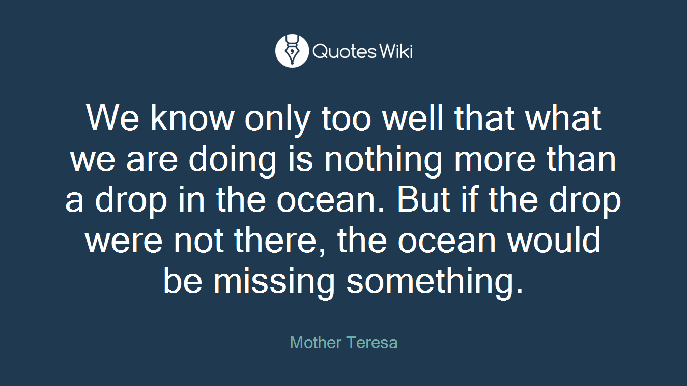 We know only too well that what we are doing is nothing more than a drop in the ocean. But if the drop were not there, the ocean would be missing something.