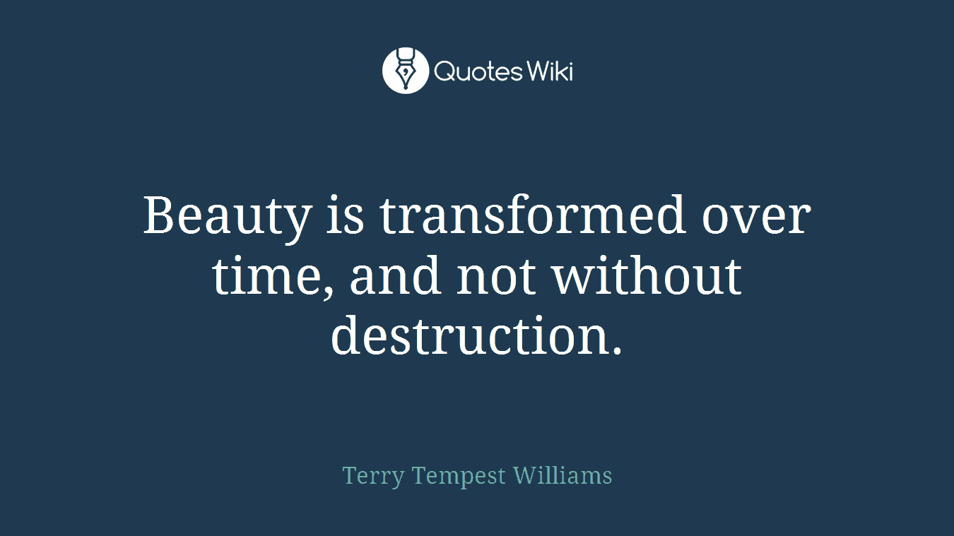 Beauty is transformed over time, and not without destruction.