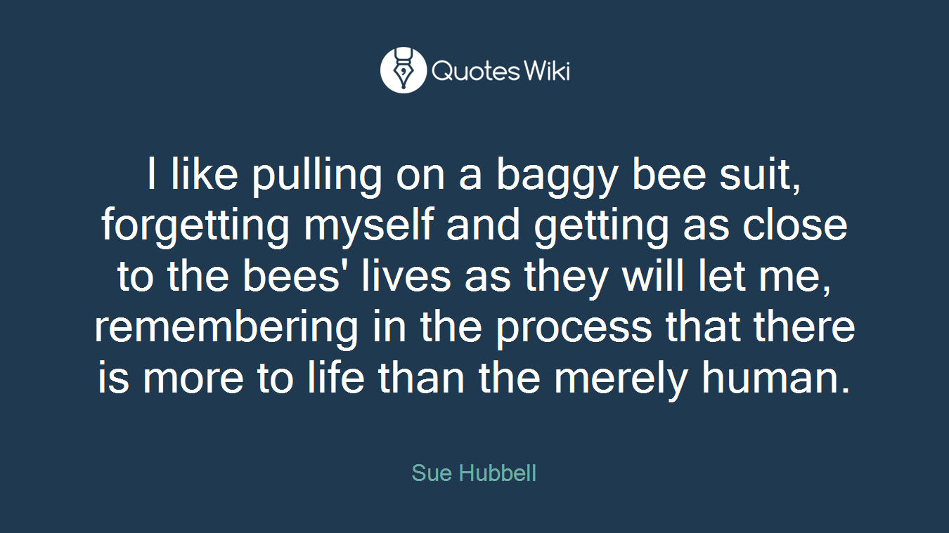 I like pulling on a baggy bee suit, forgetting myself and getting as close to the bees' lives as they will let me, remembering in the process that there is more to life than the merely human.