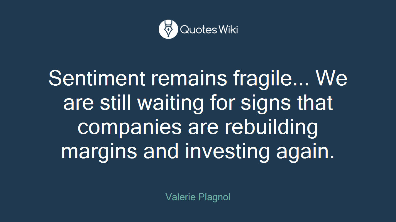 Sentiment remains fragile... We are still waiting for signs that companies are rebuilding margins and investing again.