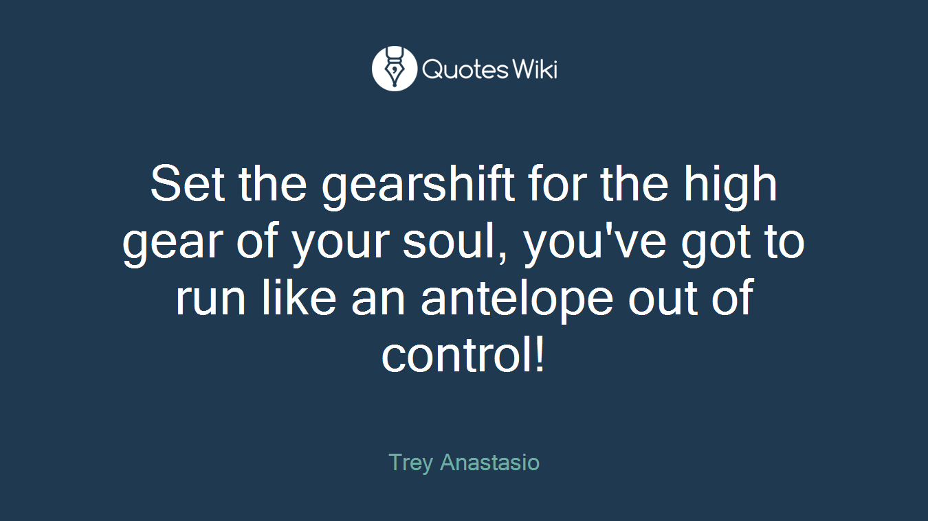 Set the gearshift for the high gear of your soul, you've got to run like an antelope out of control!