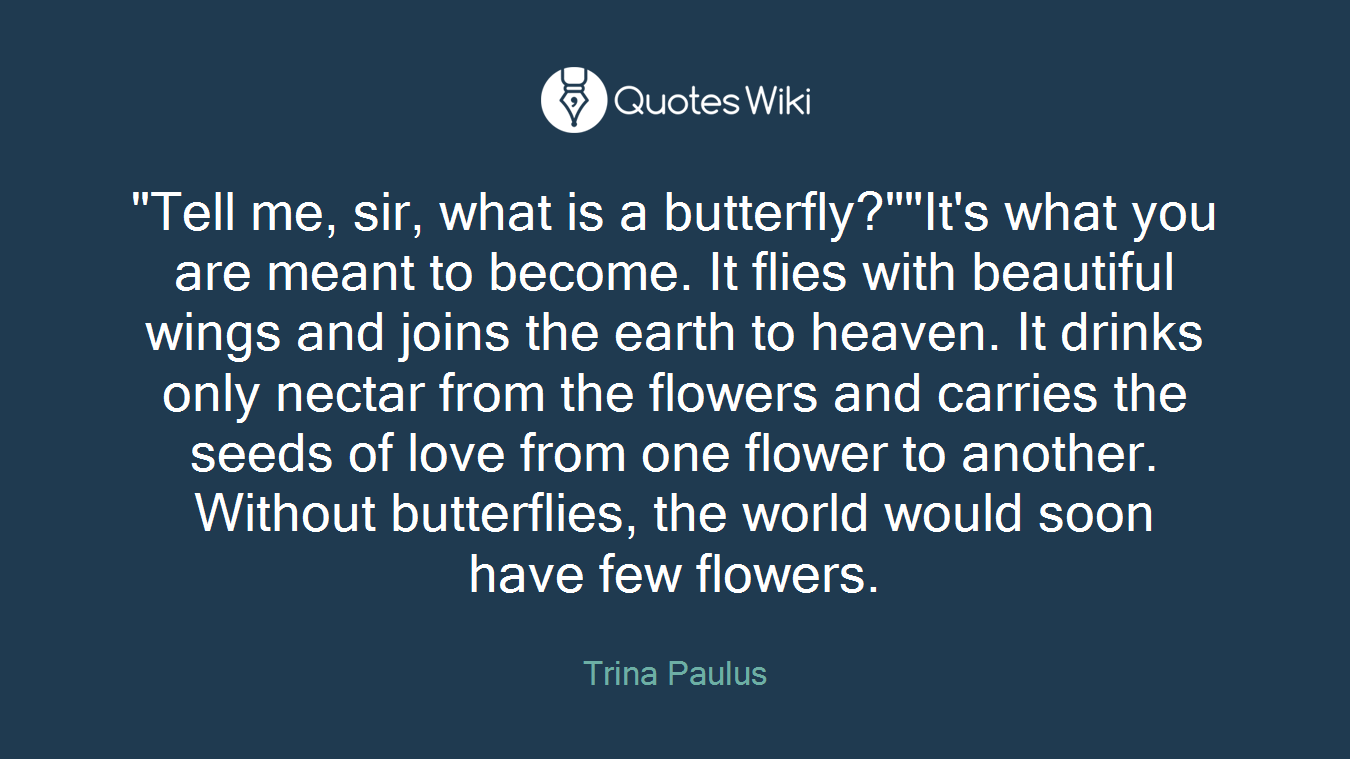 """""""Tell me, sir, what is a butterfly?""""""""It's what you are meant to become. It flies with beautiful wings and joins the earth to heaven. It drinks only nectar from the flowers and carries the seeds of love from one flower to another. Without butterflies, the world would soon have few flowers."""
