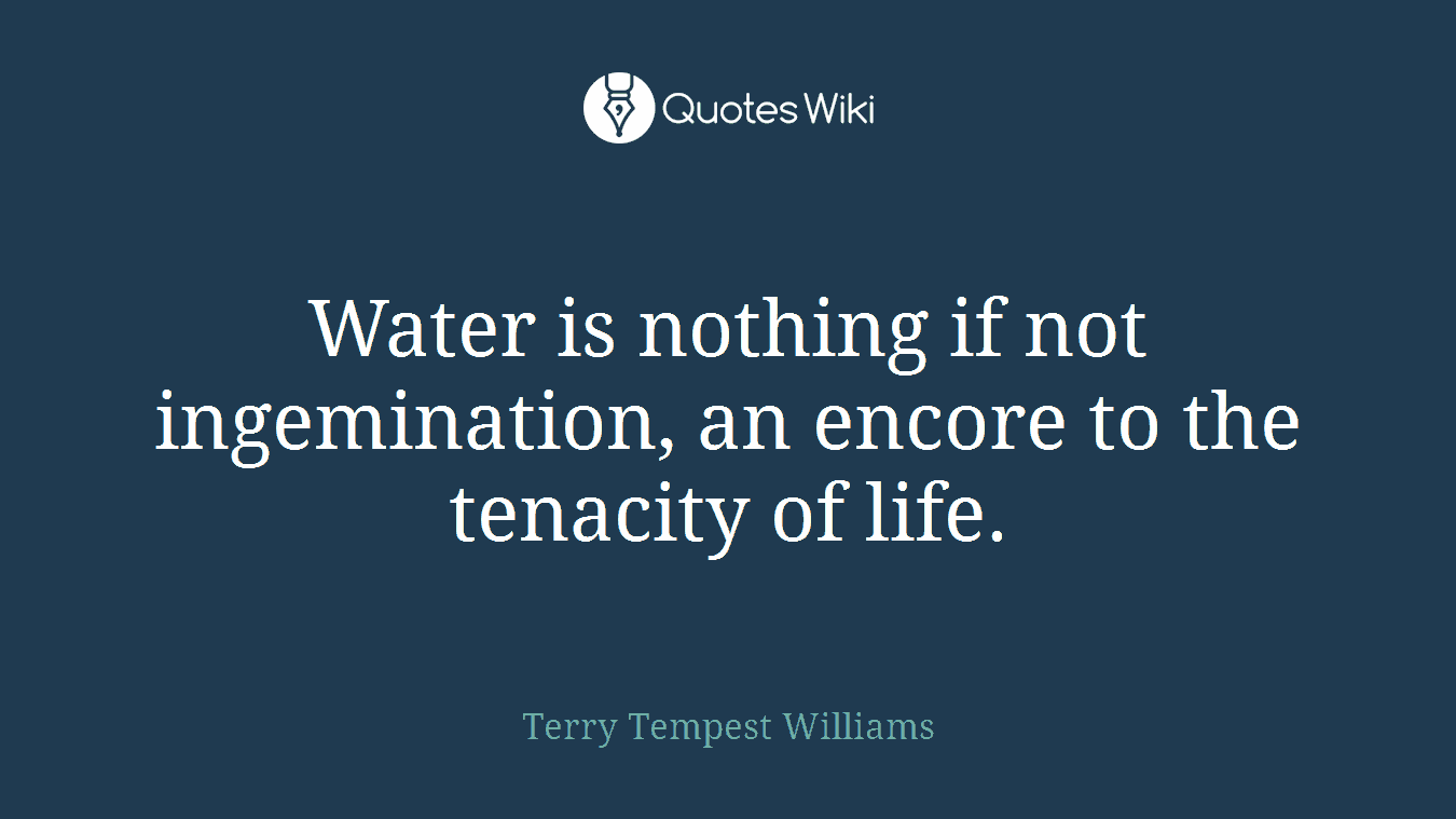 Water is nothing if not ingemination, an encore to the tenacity of life.