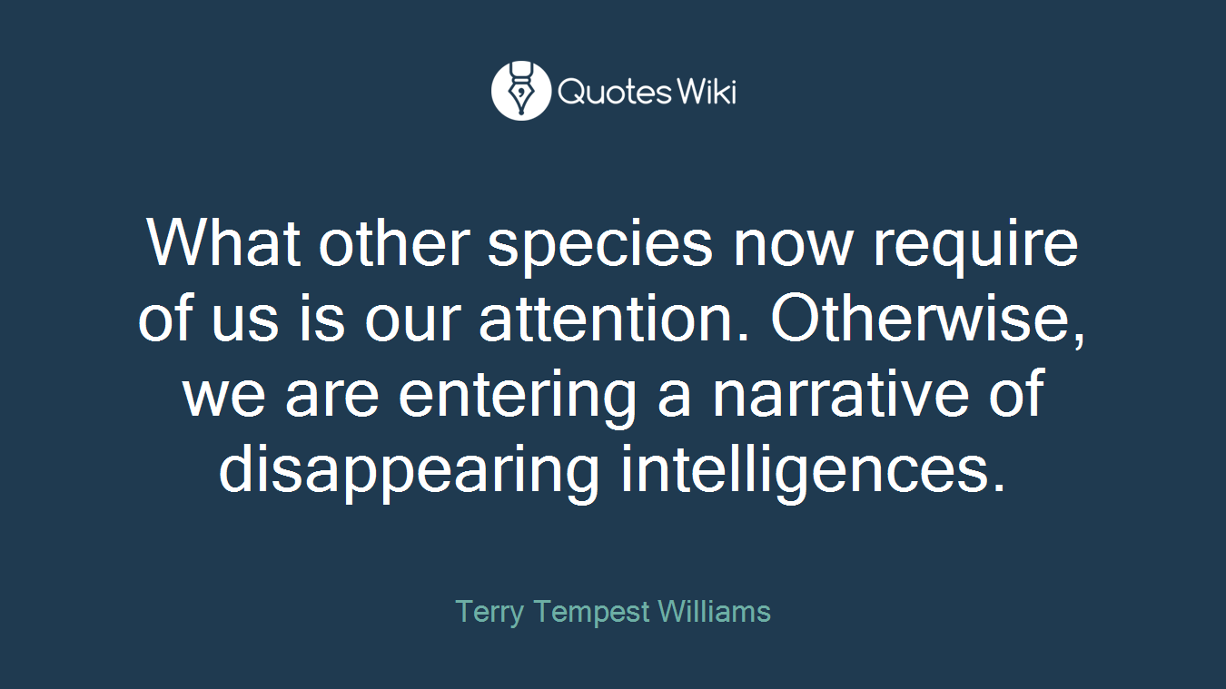 What other species now require of us is our attention. Otherwise, we are entering a narrative of disappearing intelligences.